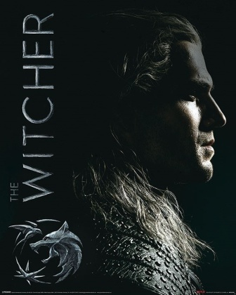 The Witcher: Shadows Embrace - Mini Poster