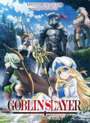 Goblin Slayer - Intégrale de la série (Collector's Edition, Mediabook, 2 DVDs)