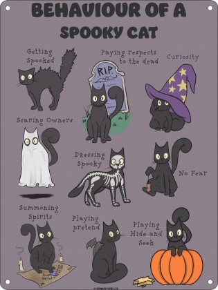 Behaviour of a Spooky Cat - Mini Tin Sign