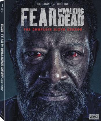 Fear The Walking Dead - Season 6 (4 Blu-rays)