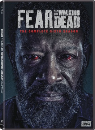 Fear The Walking Dead - Season 6 (4 DVDs)
