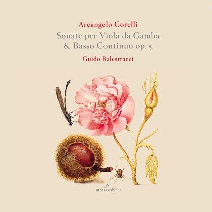 Arcangelo Corelli (1653-1713) & Guido Balestracci - Sonate Per Viola Da Gamba