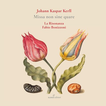 Johann Caspar Kerll (1627-1693), Fabio Bonizzoni & La Risonanza - Missa Non Sine Quare (2021 Reissue)