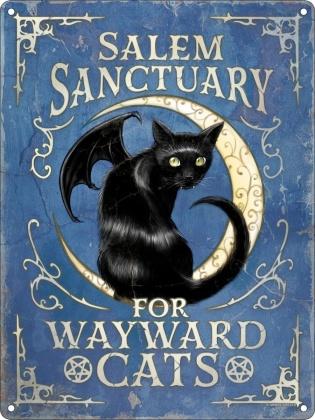 Salem Sanctuary for Wayward Cats - Mini Tin Sign
