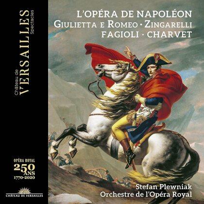 Niccolò Antonio Zingarelli (1752-1837), Stefan Plewniak, Franco Fagioli, Adèle Charvet, Philippe Talbot, … - Giulietta E Romeo (CD + DVD)