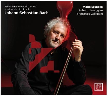 Roberto Loreggian, Mario Brunello, Francesco Galligioni & Johann Sebastian Bach (1685-1750) - Sei Suonate A Cembalo Certato (2 CDs)