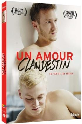 Un amour clandestin (2016)