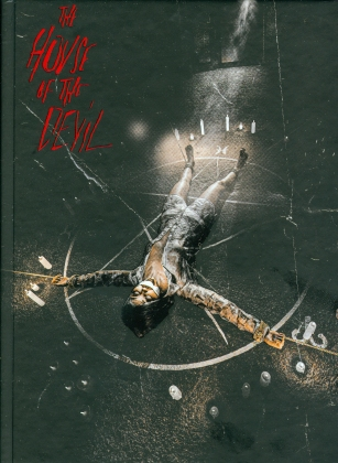 The House of the Devil (2009) (Cover B, Limited Edition, Mediabook, Blu-ray + DVD)