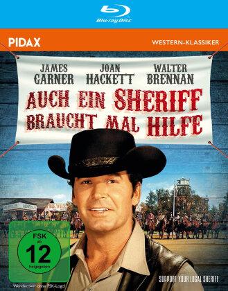 Auch ein Sheriff braucht mal Hilfe - Support Your Local Sheriff (1969) (Pidax Western-Klassiker)