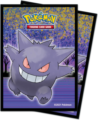 Pokémon Haunted Hollow Protector (Sammelkartenspiel-Zubehör)