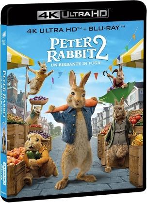 Peter Rabbit 2 - Un birbante in fuga (2021) (4K Ultra HD + Blu-ray)