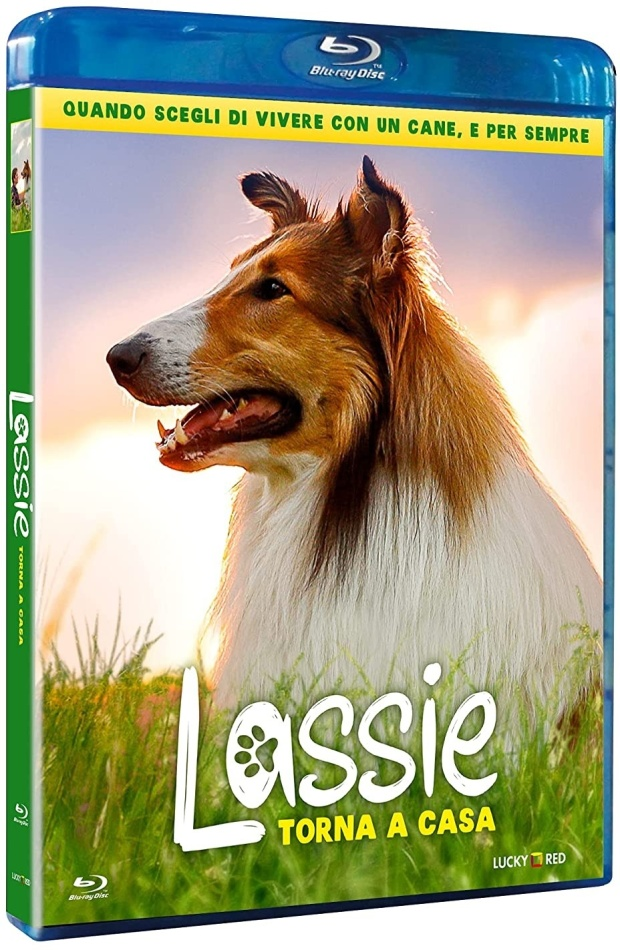 Lassie torna a casa (2020)