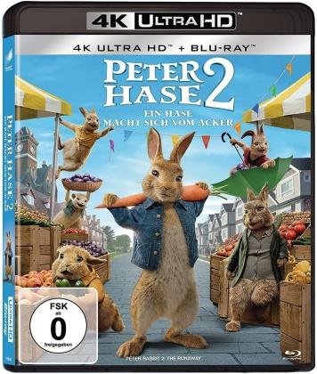 Peter Hase 2 - Ein Hase macht sich vom Acker (2021) (4K Ultra HD + Blu-ray)