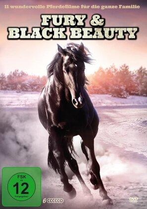 Fury & Black Beauty - 11 wundervolle Pferdefilme für die ganze Familie (6 DVDs)