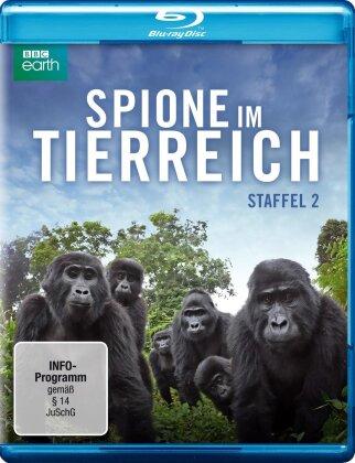 Spione im Tierreich - Staffel 2 (BBC Earth)