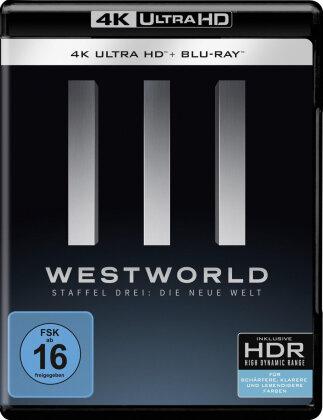 Westworld - Staffel 3 - Die neue Welt (3 4K Ultra HDs + 3 Blu-rays)