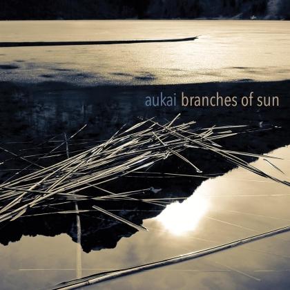 Aukai - Branches Of Sun (LP)