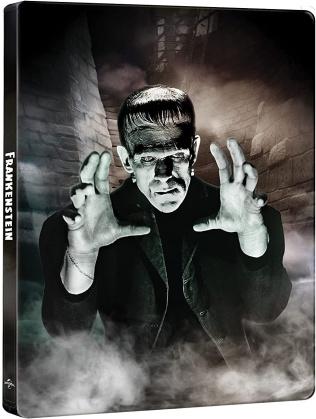 Frankenstein (1931) (Edizione 90° Anniversario, n/b, Steelbook, 4K Ultra HD + Blu-ray)