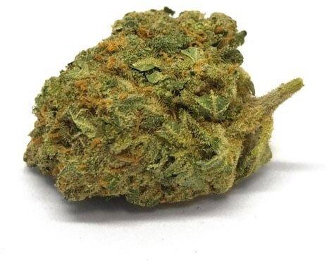 Bonnie & Clyde Orangello (5g) - 18% CBD 0.4% THC